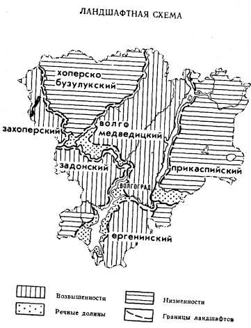 География Волгоградской области.  Природные комплексы.
